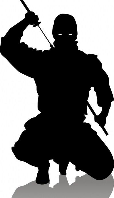 http://lock07.free.fr/Muramasa/ninja2.jpg