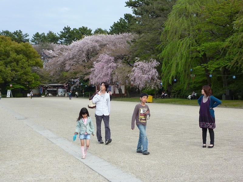 http://membres.multimania.fr/Diddu/Japon%20065%20%28Medium%29.jpg